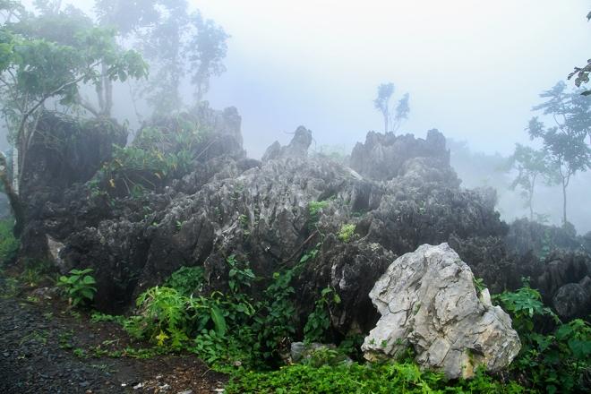 Tanay Pushes for Masungi Karst as Newest Eco-Tourism Spot